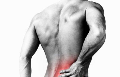 הסקירה החודשית: כאבי גב, חלק ג'.