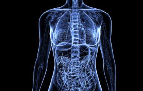 זיהומים חוזרים בדרכי השתן בנשים מבוגרות: סקירת עדכון מה-JAMA (שאלת CME)
